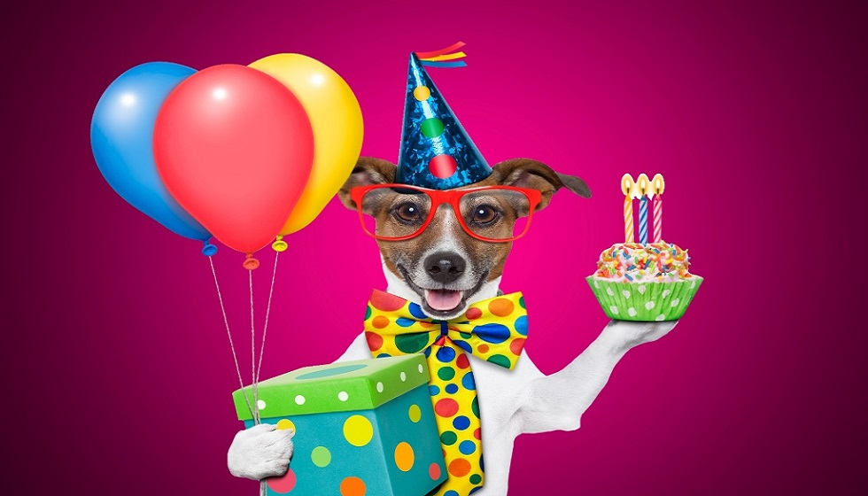 50 best funny birthday wishes for men make a funny bday funny birthday wishes for men altavistaventures Images