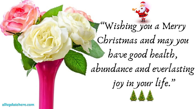 merry christmas greeting words