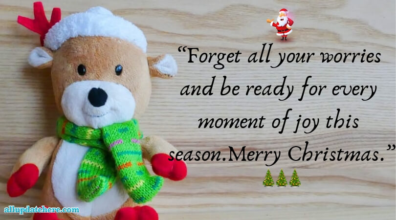 Famous Merry Christmas quotes With Images of All Time