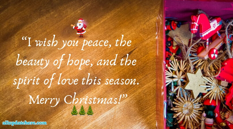 christmas tree light quotes