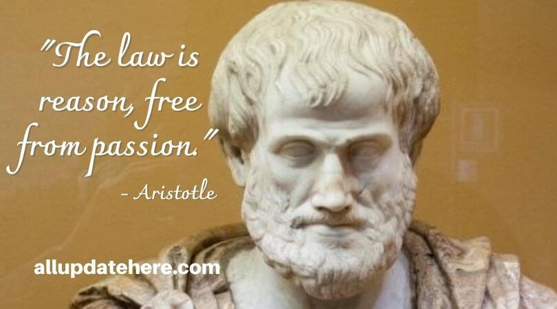 aristotle quotes on politics